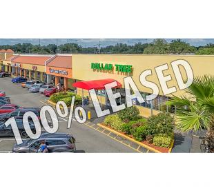 Temple Terrace Shoppes - 100% Leased